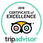 Best of Savannah TripAdvisor